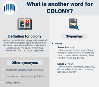 colony, synonym colony, another word for colony, words like colony, thesaurus colony