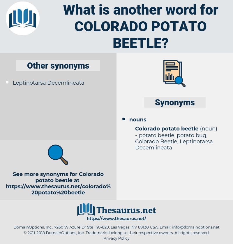 Colorado Potato Beetle, synonym Colorado Potato Beetle, another word for Colorado Potato Beetle, words like Colorado Potato Beetle, thesaurus Colorado Potato Beetle