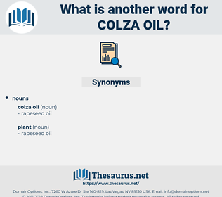 colza oil, synonym colza oil, another word for colza oil, words like colza oil, thesaurus colza oil