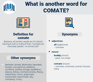 comate, synonym comate, another word for comate, words like comate, thesaurus comate