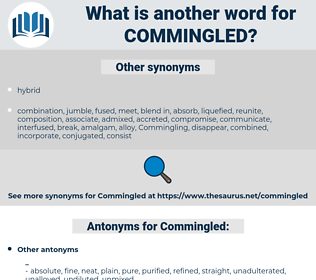 Commingled, synonym Commingled, another word for Commingled, words like Commingled, thesaurus Commingled