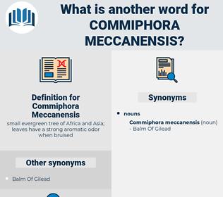 Commiphora Meccanensis, synonym Commiphora Meccanensis, another word for Commiphora Meccanensis, words like Commiphora Meccanensis, thesaurus Commiphora Meccanensis