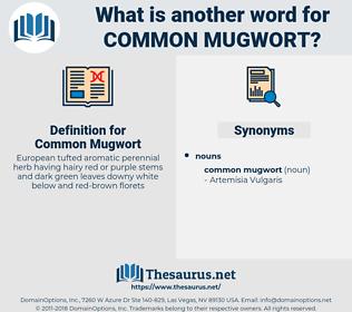 Common Mugwort, synonym Common Mugwort, another word for Common Mugwort, words like Common Mugwort, thesaurus Common Mugwort