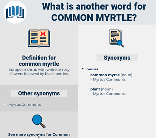 common myrtle, synonym common myrtle, another word for common myrtle, words like common myrtle, thesaurus common myrtle