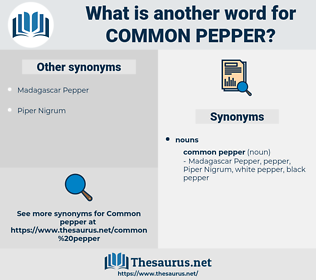 common pepper, synonym common pepper, another word for common pepper, words like common pepper, thesaurus common pepper