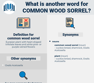 common wood sorrel, synonym common wood sorrel, another word for common wood sorrel, words like common wood sorrel, thesaurus common wood sorrel