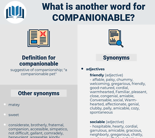 companionable, synonym companionable, another word for companionable, words like companionable, thesaurus companionable
