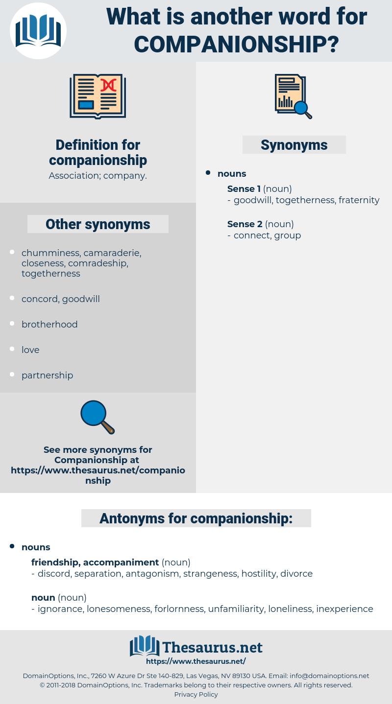 companionship, synonym companionship, another word for companionship, words like companionship, thesaurus companionship