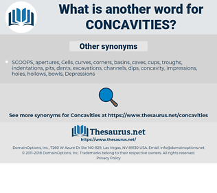 Concavities, synonym Concavities, another word for Concavities, words like Concavities, thesaurus Concavities