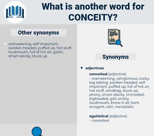 conceity, synonym conceity, another word for conceity, words like conceity, thesaurus conceity