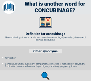 concubinage, synonym concubinage, another word for concubinage, words like concubinage, thesaurus concubinage