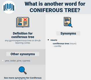 coniferous tree, synonym coniferous tree, another word for coniferous tree, words like coniferous tree, thesaurus coniferous tree