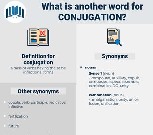conjugation, synonym conjugation, another word for conjugation, words like conjugation, thesaurus conjugation