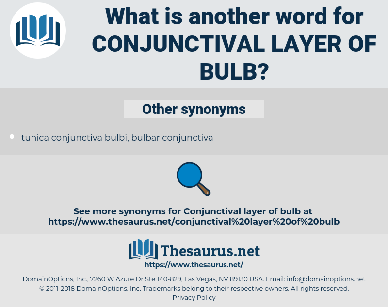 conjunctival layer of bulb, synonym conjunctival layer of bulb, another word for conjunctival layer of bulb, words like conjunctival layer of bulb, thesaurus conjunctival layer of bulb