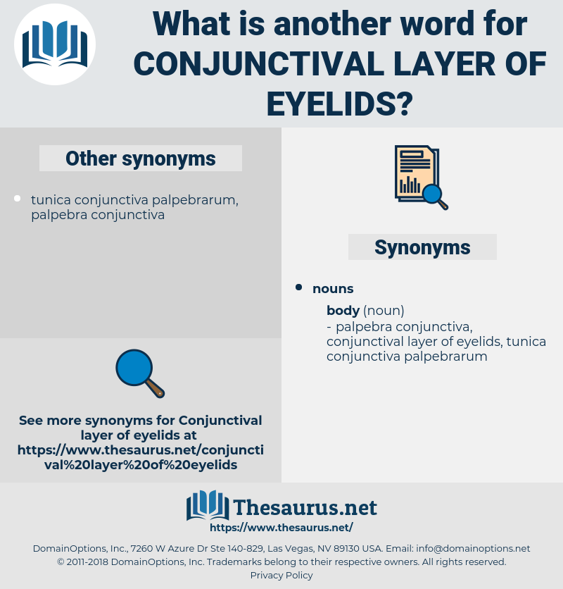 conjunctival layer of eyelids, synonym conjunctival layer of eyelids, another word for conjunctival layer of eyelids, words like conjunctival layer of eyelids, thesaurus conjunctival layer of eyelids