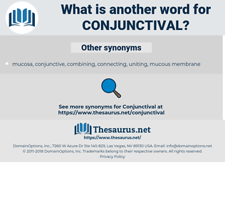 conjunctival, synonym conjunctival, another word for conjunctival, words like conjunctival, thesaurus conjunctival