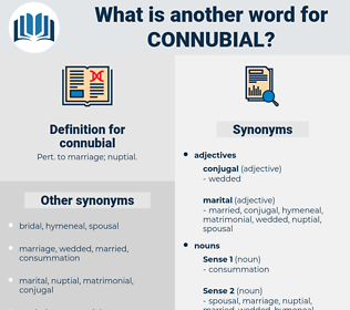 connubial, synonym connubial, another word for connubial, words like connubial, thesaurus connubial