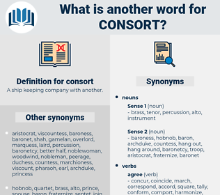 consort, synonym consort, another word for consort, words like consort, thesaurus consort