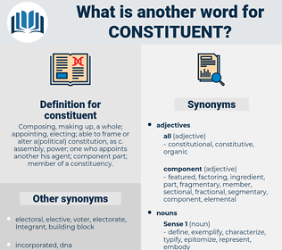 constituent, synonym constituent, another word for constituent, words like constituent, thesaurus constituent