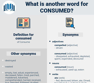 consumed, synonym consumed, another word for consumed, words like consumed, thesaurus consumed