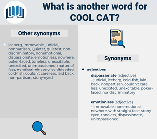 cool cat, synonym cool cat, another word for cool cat, words like cool cat, thesaurus cool cat