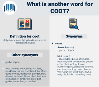 coot, synonym coot, another word for coot, words like coot, thesaurus coot