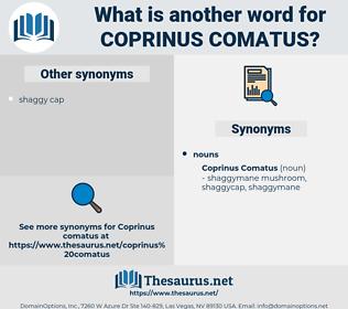 Coprinus Comatus, synonym Coprinus Comatus, another word for Coprinus Comatus, words like Coprinus Comatus, thesaurus Coprinus Comatus