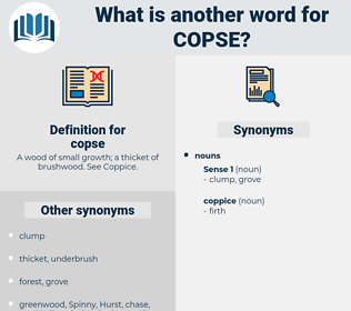 copse, synonym copse, another word for copse, words like copse, thesaurus copse