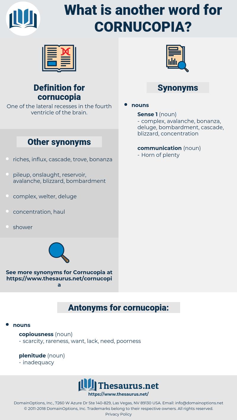 cornucopia, synonym cornucopia, another word for cornucopia, words like cornucopia, thesaurus cornucopia