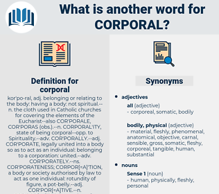 corporal, synonym corporal, another word for corporal, words like corporal, thesaurus corporal
