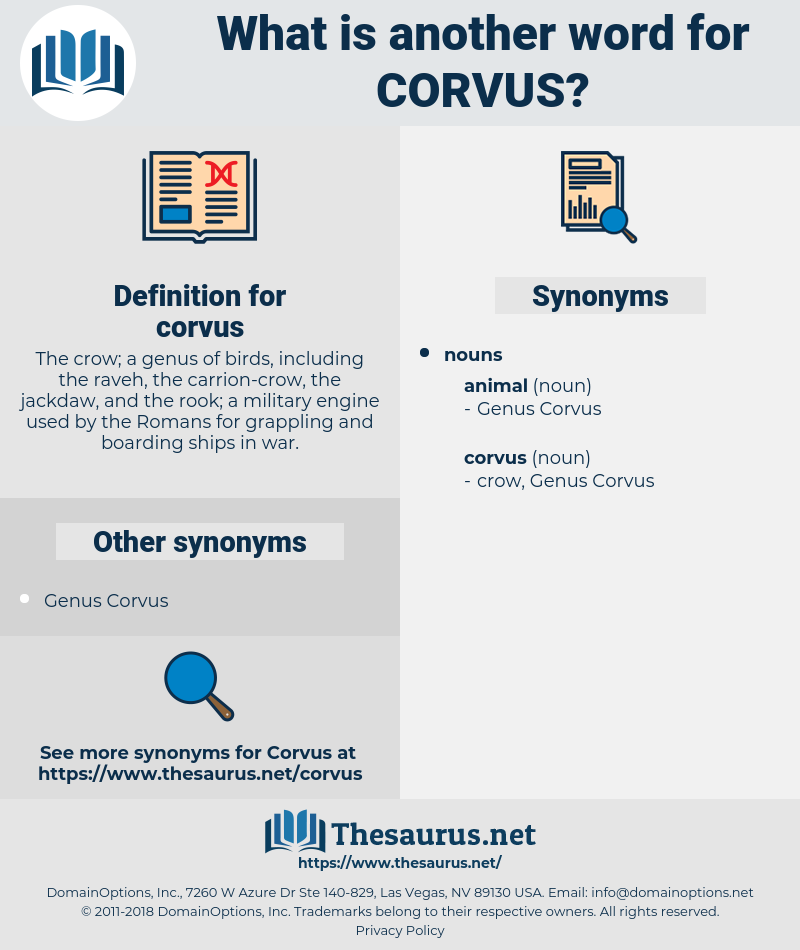 corvus, synonym corvus, another word for corvus, words like corvus, thesaurus corvus