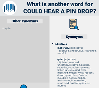 could hear a pin drop, synonym could hear a pin drop, another word for could hear a pin drop, words like could hear a pin drop, thesaurus could hear a pin drop