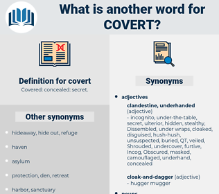 covert, synonym covert, another word for covert, words like covert, thesaurus covert