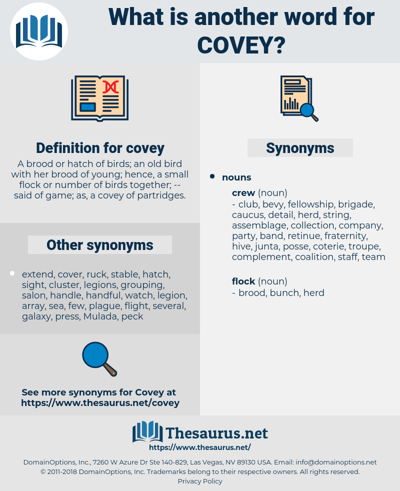 covey, synonym covey, another word for covey, words like covey, thesaurus covey
