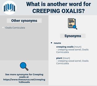 creeping oxalis, synonym creeping oxalis, another word for creeping oxalis, words like creeping oxalis, thesaurus creeping oxalis