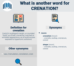 crenation, synonym crenation, another word for crenation, words like crenation, thesaurus crenation