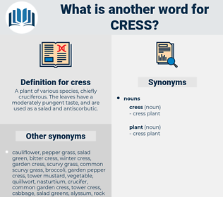 cress, synonym cress, another word for cress, words like cress, thesaurus cress