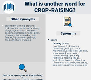 crop-raising, synonym crop-raising, another word for crop-raising, words like crop-raising, thesaurus crop-raising