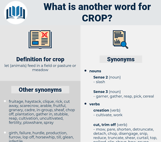 crop, synonym crop, another word for crop, words like crop, thesaurus crop