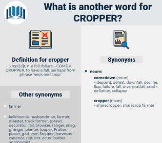 cropper, synonym cropper, another word for cropper, words like cropper, thesaurus cropper