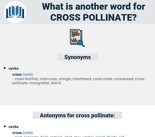 cross-pollinate, synonym cross-pollinate, another word for cross-pollinate, words like cross-pollinate, thesaurus cross-pollinate