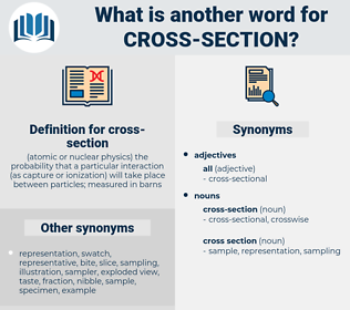 cross section, synonym cross section, another word for cross section, words like cross section, thesaurus cross section