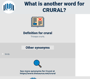 crural, synonym crural, another word for crural, words like crural, thesaurus crural