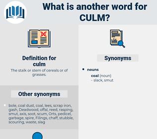 culm, synonym culm, another word for culm, words like culm, thesaurus culm