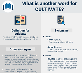 cultivate, synonym cultivate, another word for cultivate, words like cultivate, thesaurus cultivate