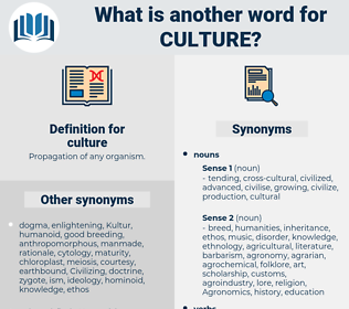 culture, synonym culture, another word for culture, words like culture, thesaurus culture