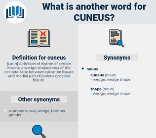 cuneus, synonym cuneus, another word for cuneus, words like cuneus, thesaurus cuneus