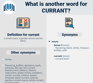 currant, synonym currant, another word for currant, words like currant, thesaurus currant