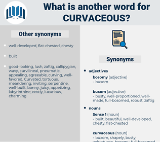 curvaceous, synonym curvaceous, another word for curvaceous, words like curvaceous, thesaurus curvaceous