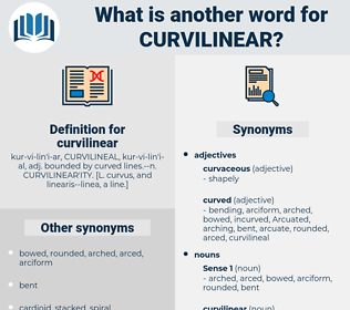 curvilinear, synonym curvilinear, another word for curvilinear, words like curvilinear, thesaurus curvilinear